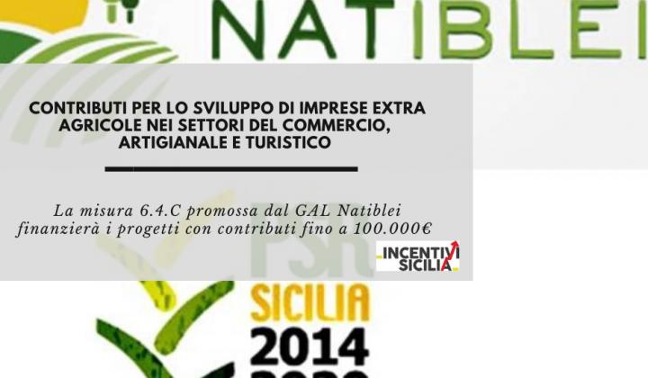 Immagine articolo: Contributi fino a 100.000€ per lo sviluppo di imprese extra agricole nei settori del commercio, artigianale e turistico con la misura 6.4.C del GAL Natiblei