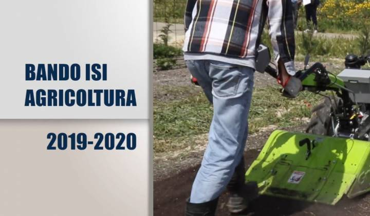 Immagine articolo: Pubblicato il Bando ISI INAIL 2019/2020 dedicato alle sole imprese agricole: quasi 6 mil € per le imprese agricole siciliane