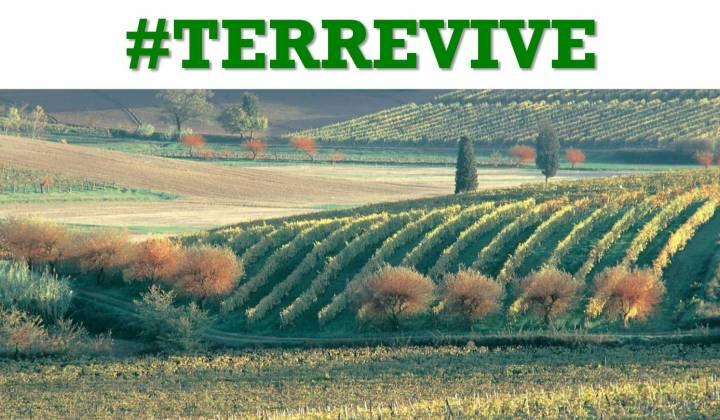 Immagine articolo: L' ISMEA mette all'asta terreni agricoli dello stato anche in Sicilia