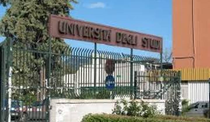 Immagine articolo: 154 Dottorati a bando presso l'Università di Palermo