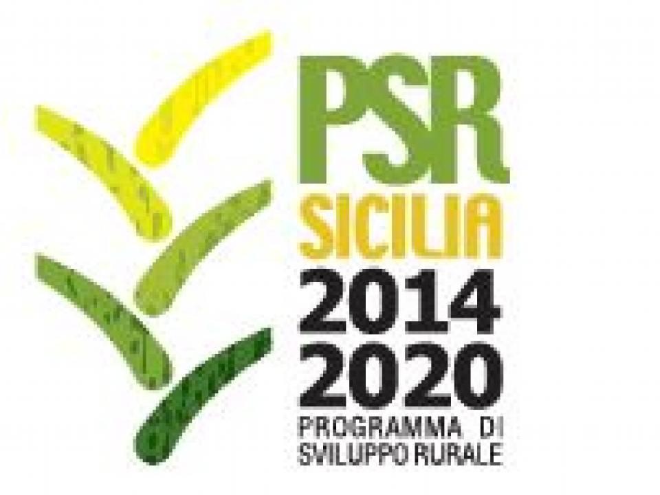 Immagine articolo: Pubblicate le graduatorie definitive della misura 4.1 del PSR Sicilia. 617 le aziende dichiarate ammissibili.